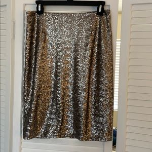 Sequined Skirt